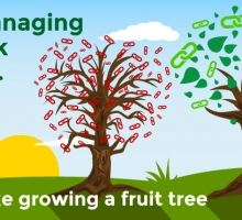 Why managing your link profile is a lot like growing a fruit tree